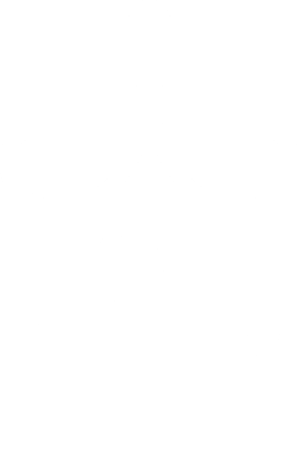 NORTH FLAGGERS